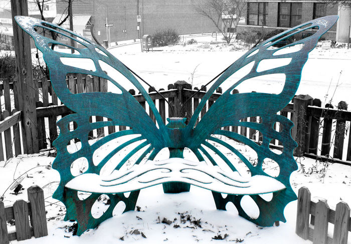 B&w Bench Blizzard Blue Butterfly City Day Durham Jonas Metal Metal Work No People North Carolina Outdoors Snow Snow Covered Snowy Southeast Turquoise Winter