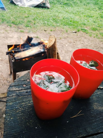 Nature Camping Fire Paradise Morning Forest Tea Time Mint Relax Time  Happyness Mobilephoto Not Professional