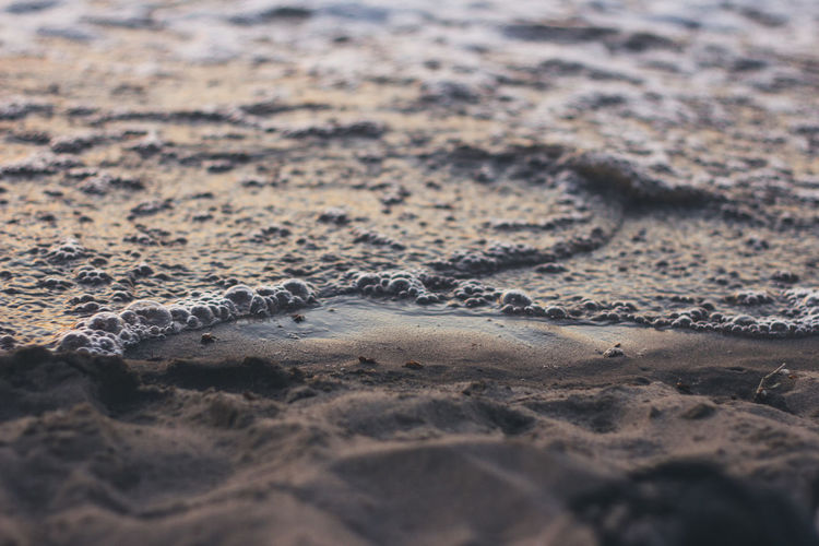 Land Beach Sand Selective Focus No People Sea Nature Day Water Wave Beauty In Nature Motion Sport Aquatic Sport Tranquility Reaching Outdoors Surface Level