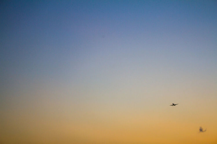 Air Air Vehicle Airplane Animal Themes Architecture Bird Blue Clear Sky Day Flying Hachijo-island Mid-air Nature No People One Animal OpenEdit Orange Color Outdoors Parachute Sky Sunset Transportation