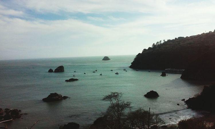 Trinidad Lostcoast Peace ✌ Westcoastisthebestcoast👌 Nature Beauty Beach Norcal