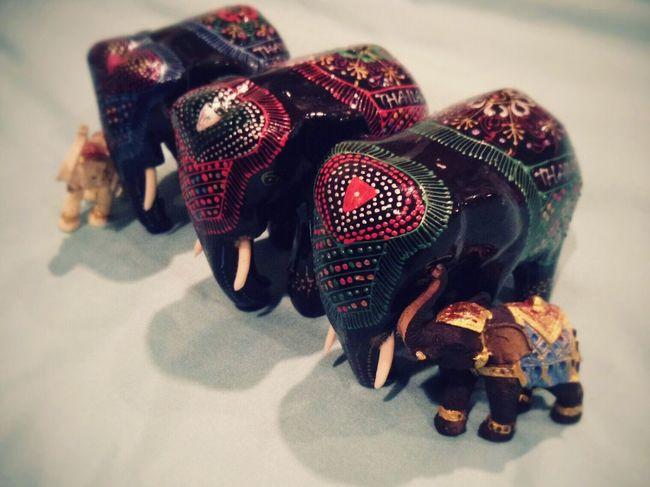 タイ アユタヤ 象