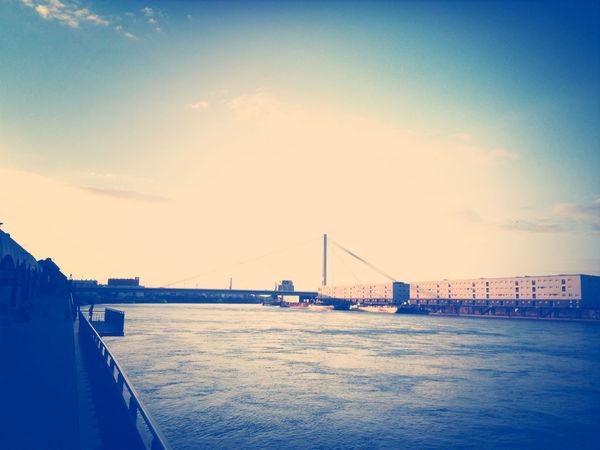 Rhein in Mannheim