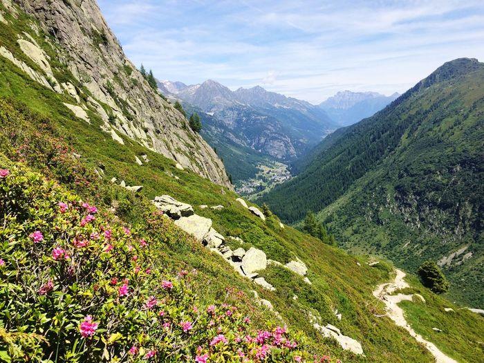 Hiking Chamonix-Mont-Blanc France Summertime