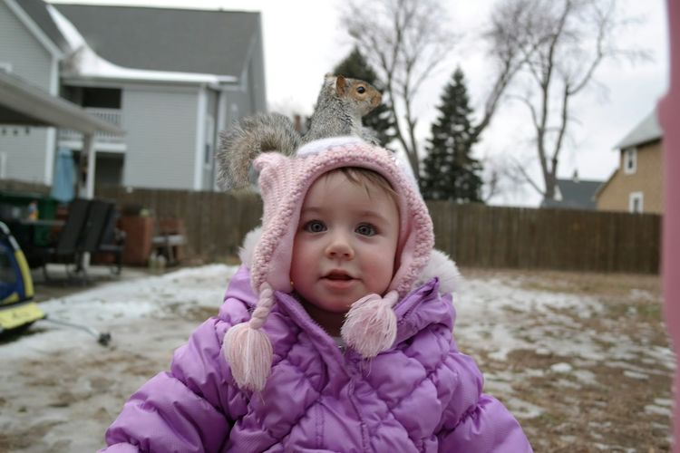 Squirrel in the hood. Winter My Backyard Squirrel Daughter Playing Shenanigans Friendly Animals Grey Neck Warmer WTF Omg Outdoor Photography Nature Squirrel Soup Pooping 2yo