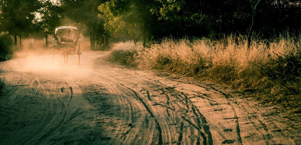 Horse cart running on dirt road