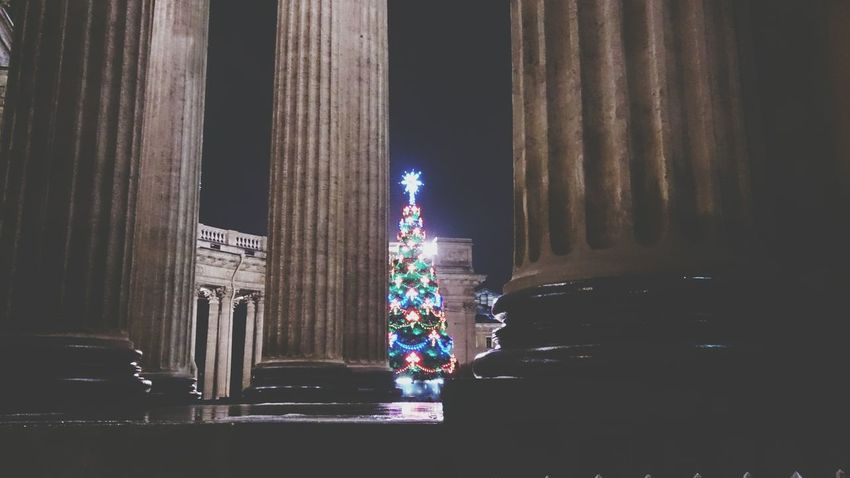 New year tree (yolka) and columns at Kazan cathedral. Saint Petersburg, Russia. Ornaments Season  Detail Close-up EyeEm Selects Mobilephotography Mobile Photography Sony Xperia Zr Night Lights Festive Season New Year Christmas Tree Christmas Lights Temple Cathedral City Lights Decoration Christmas Time Christmas Ornament Festive Christmastime Architectural Column Night Illuminated Architecture No People Outdoors