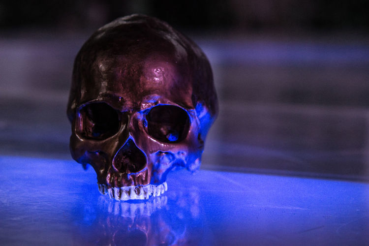 Cranium Death DeathsHead Hamlet Requisite Shakespeare Skeleton Theater To Be Or Not To Be Blue Light Close-up Death's Head Focus On Foreground Human Body Part Human Face Human Skeleton Prop Schädel Skull Theatre Totenkopf