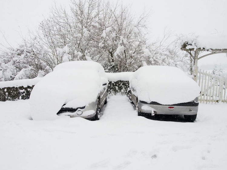 Cars France Loir-et-Cher Winter Bare Tree Beauty In Nature Cold Temperature Day Nature No People Outdoors Snow Snowdrift Snowing Transportation Tree Weather White Color Winter