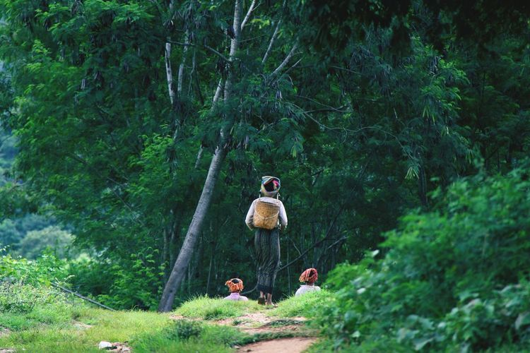 Rear view of woman carrying basket in forest