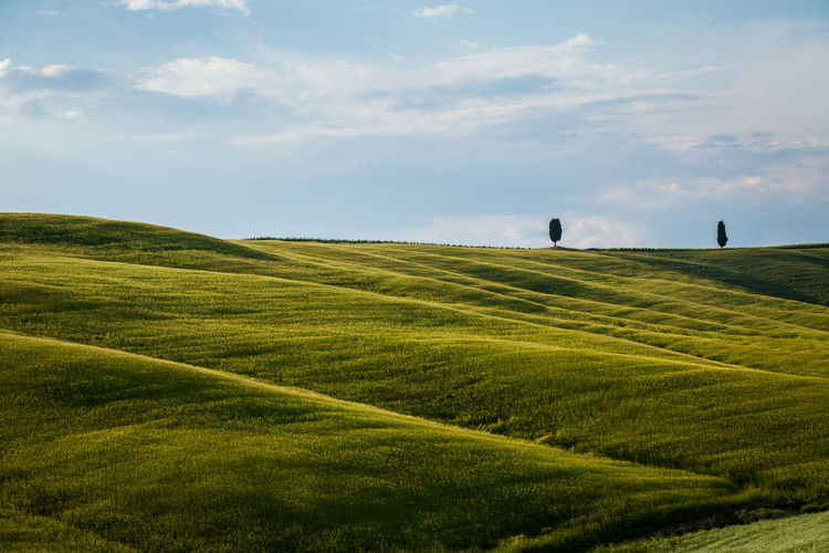 Val D'Orcia, Tuscany, Italy. Travelling through the countryside Beauty In Nature Calm Cloud - Sky Coutryside Field Fieldscape Green Green Color Hills Hillside Italy Nature Non-urban Scene Plant Tranquility Travel Travel Destinations Tuscan Tuscany