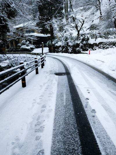 it is Snowing in Tokyo today with rain. my first snow experience in Tokyo. miss the snowing days in Kyoto . Road Way Whiteandblack Kifuneshrine