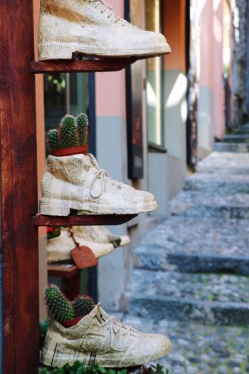 Low section of lants potted in shoes on street against building