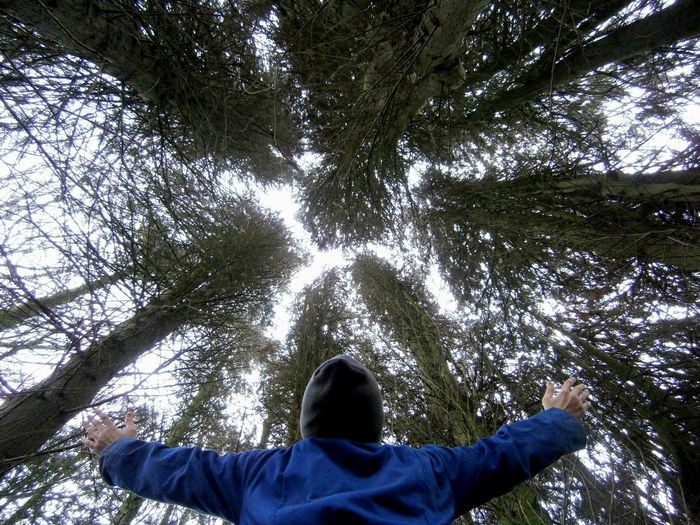 Man with arms outstretched against tall trees