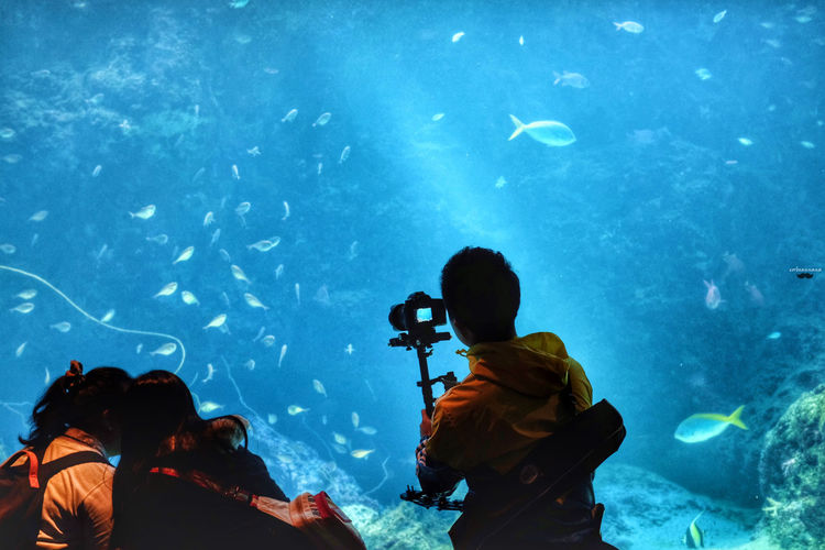 Rear view of people standing in aquarium