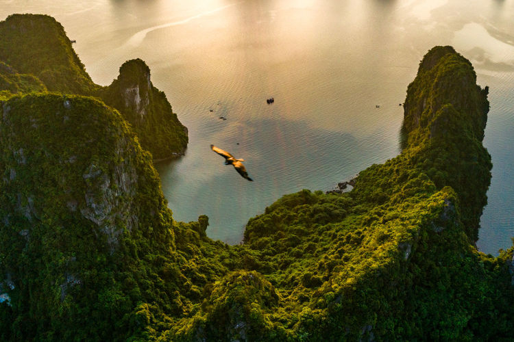 Ha Long Bay Sea Seascape Beauty In Nature Sky Tranquility Water Scenics - Nature Nature High Angle View Land Mountain Tranquil Scene Cliff Non-urban Scene Day Tree Outdoors Green Color
