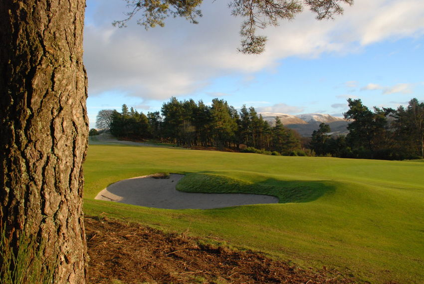 Bunker Gleneagles Golf Course Kings Course Perthshire, Scotland Beauty In Nature Day Golf Golf Course Grass Green - Golf Course Growth Landscape Nature No People Outdoors Sand Trap Scenics Sky Snow On Hills Sport Tree