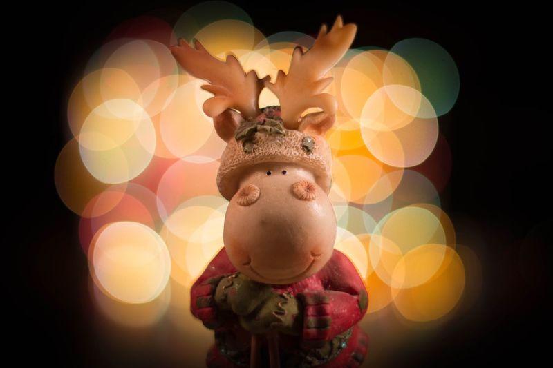 Christmas Lights Chrisrmas Xmas Lights  Xmas Deer Santaclaus Bokeh Photography Bokeh Bokehlicious Bokeh Lights Bignose Antler Figure Figurephotography Plasticfigure
