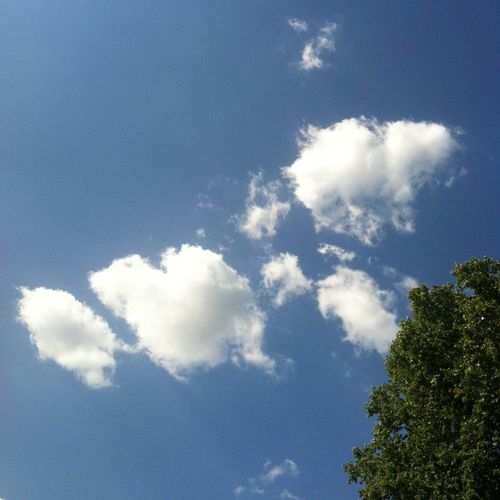 Clouds And Sky EyeEm Nature Lover The Purist (no Edit, No Filter) Sky_collection