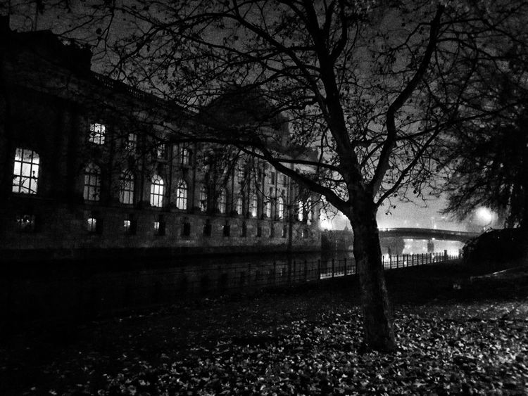 On the way home another night in fall... Grainy Images Museum Island Architecture Autumn Bare Tree Blackandwhite Branch Building Exterior City Grainy Effect Grainy Photo Museum Island Berlin Night No People Outdoors Sky Tree