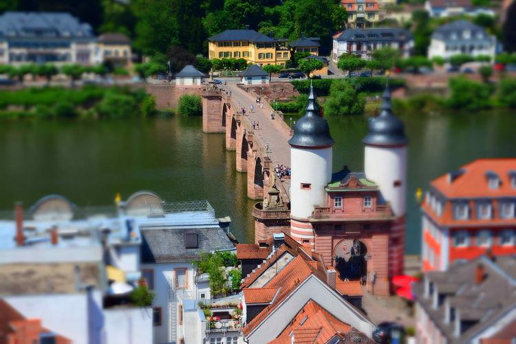Heidelberg Karl-theodor-brücke Alte Brücke Heidelberg Architecture Built Structure Neckar River Tilt Shift Effect Water
