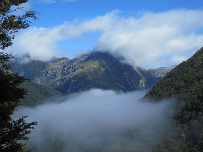 Mountain Scenics - Nature Sky Beauty In Nature Cloud - Sky Tranquil Scene Tree Environment Nature No People Tranquility Plant Landscape Fog Non-urban Scene Land Day Mountain Range Outdoors Mountain Peak New Zealand Kepler Track