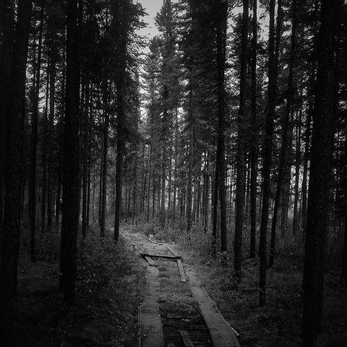 Walking Away Toward Infinity - Goodbye Réal IPhoneography The Minimals (less Edit Juxt Photography) Mobileart