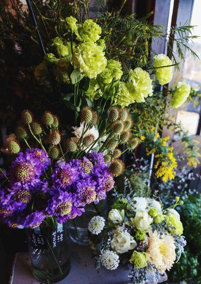 Flower Plant Day Flower Shop Beautiful PLZ FOLLOW ME Japanese