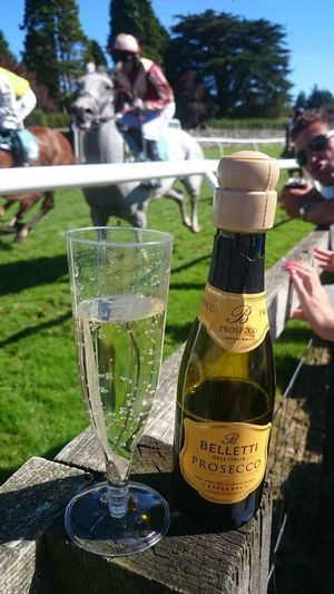 Focus On Foreground Food And Drink Alcohol Wineglass Day Drinking Glass Outdoors Nature Wine Refreshment Horses Horseracing Horsepower Horseback Riding Horce Race Horse Photography  Horse Jumping