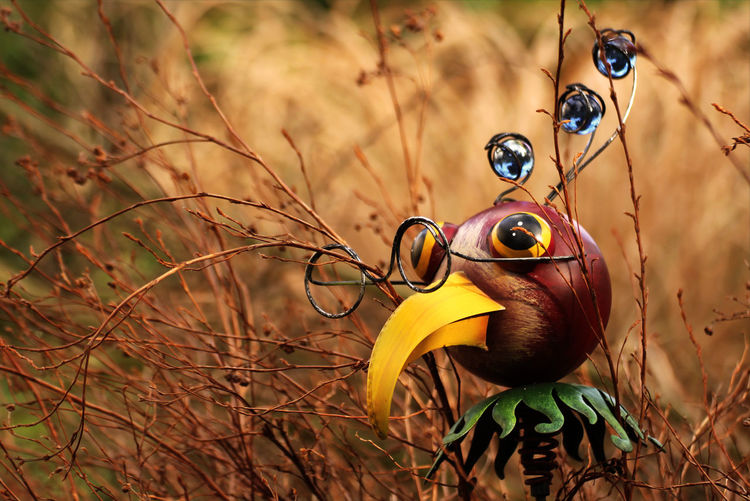 Beauty In Nature Bird Sculpture Close-up Day Decoration Focus On Foreground Garden Garden Decoration Glasses Grass Nature No People Outdoors