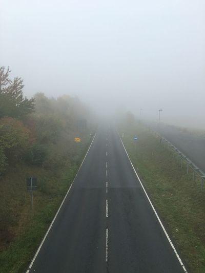 Foggy! Nebel Fog