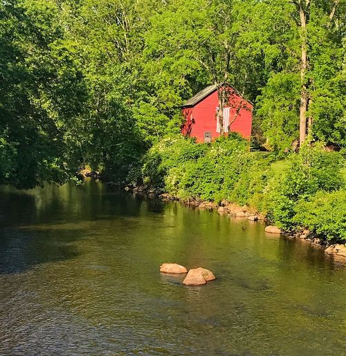 Tree Water Nature Outdoors No People Day Built Structure Architecture Beauty In Nature Building Exterior Barn Red Barn River Green Stream Raritan River Hunterdon County New Jersey