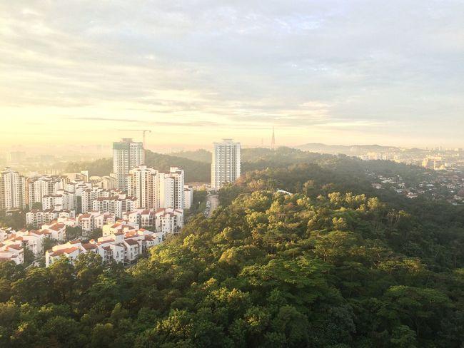 Sunrise Forest Reserve Urban Forest First Eyeem Photo