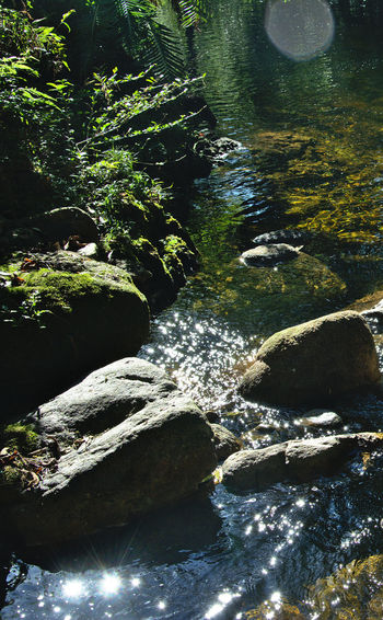 Beautiful Day Beauty In Nature Ferm No People Non Urban Scene Outdoors Plant Reflections River Rocks And Water Tranquility Water