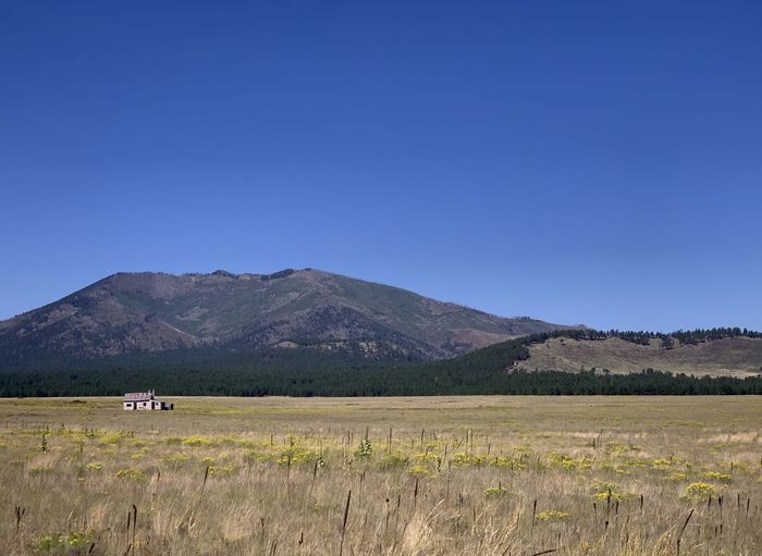 Scenic view of field and mountains against blue sky