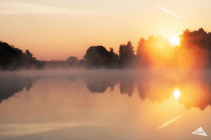 Dathée lake Mist & Sunrise. All is and Magic ! :) EyeEmNewHere Normandie Orange Sky Reflection Trees Dathée Lake Landscape Landscapes Mist Normandy Sun Sunrise Vire