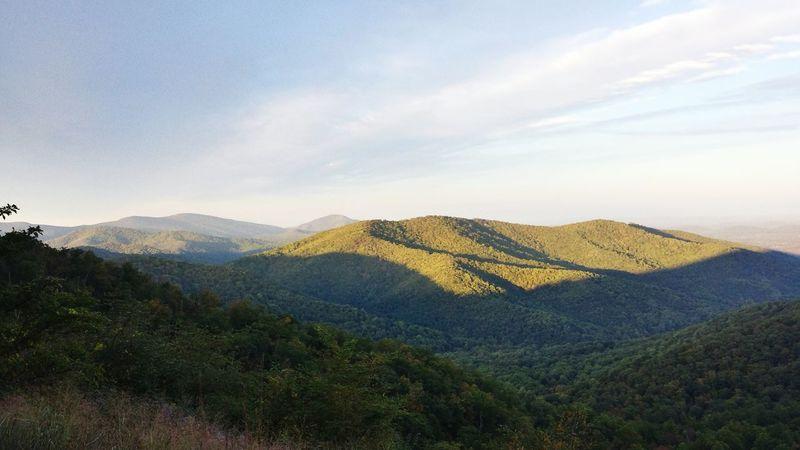 Shenandoah Landscape