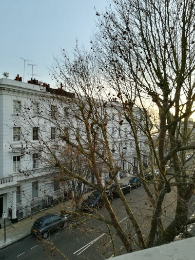 London mornings at Publove London Londres 2018 Art Building Morning City Bare Tree Tree Branch Water Architecture Building Exterior Sky Residential Structure Vehicle Street
