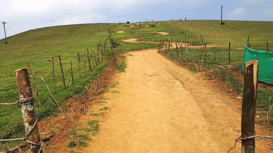 Rural Scene No