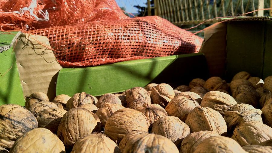 Close-up of walnuts for sale in market