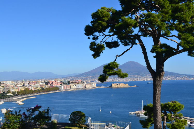 Naples Naples Bay Architecture Beauty In Nature Beauty In Nature Blue Branch Building Exterior Built Structure City Day Italy Mountain Nature No People Outdoors Place To Visit Scenics Sea Sky Town Travel Destinations Tree Vesuvius  Water