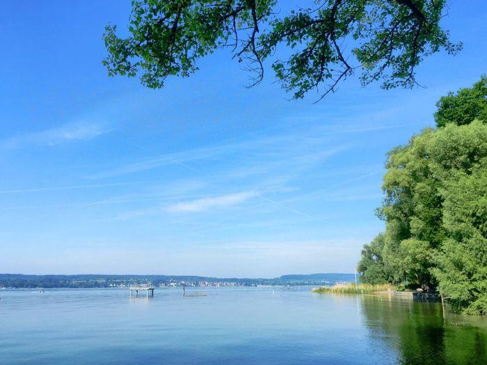 Blick überm Bodensee bei Nussdorf Lake Constance Lake View