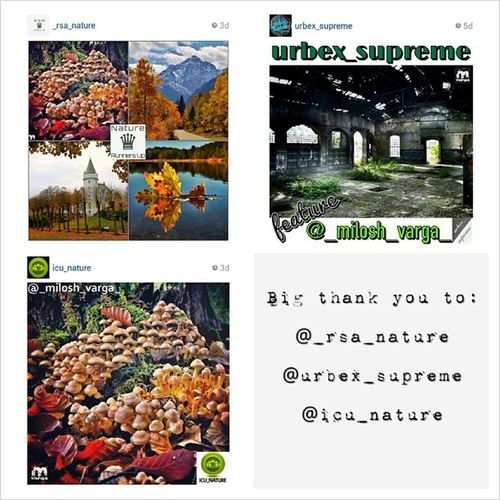 Today i wanne say thank you and give back some respect to the pages and their hard working teames who featured me the last days. Thanks a lot, every single feature is much appreciated. Thank you @_rsa_nature! Rsa_nature Thank you @urbex_supreme! Urbex_supreme Thank you @icu_nature! Icu_nature