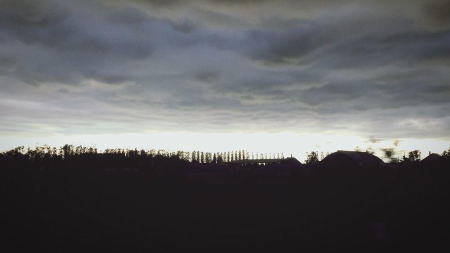Silhouette Sky