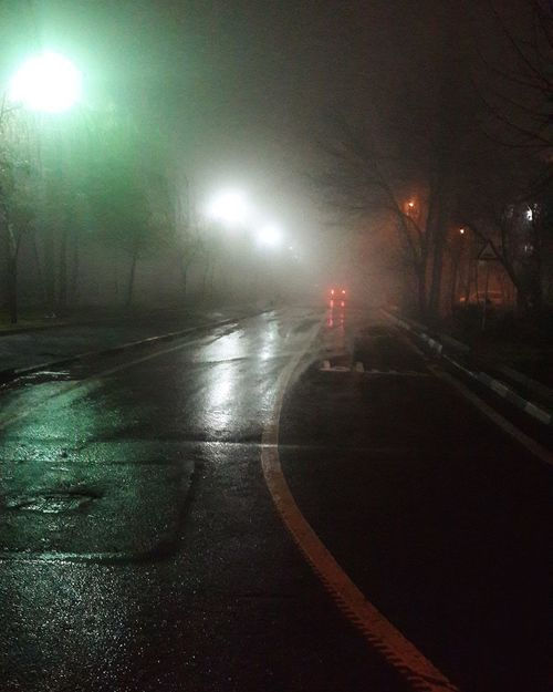 Illuminated Transportation Road Night Street Light The Way Forward Tree Cold Temperature Outdoors Car Silhouette Green Color Red Fog Foggy Nightphotography Night Lights Night View Night Sky Night Out Night Photography Fogy Winter Christmastime Tehran Traveling Home For The Holidays