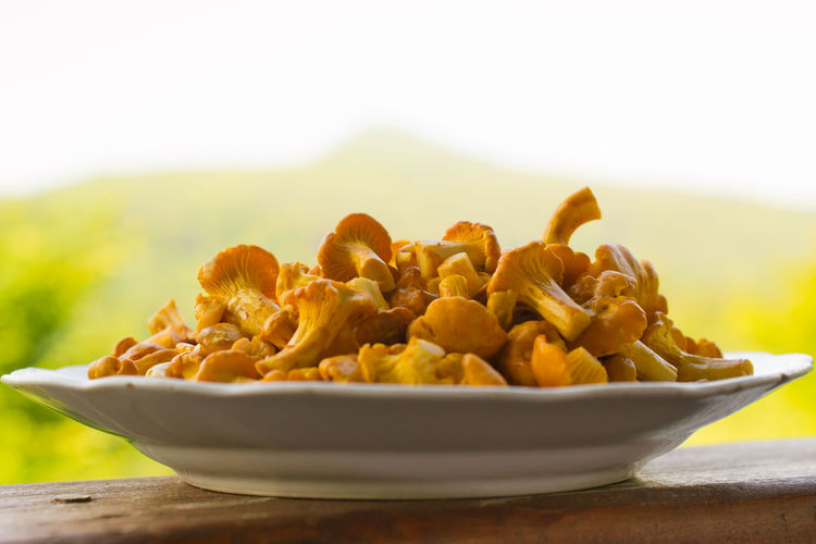 Abundance Close-up Dry Food Food And Drink Freshness Healthy Eating Indulgence Large Group Of Objects Mushroom Natural Pattern Nature Nature Photography No People Organic Ripe Selective Focus Still Life Temptation Vegetable Yellow Pastel Power