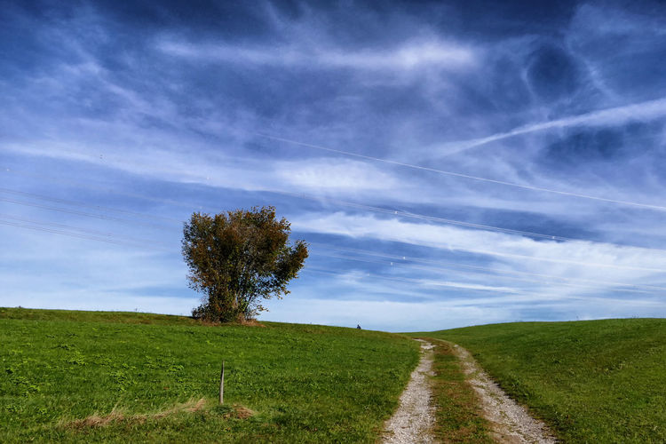 Der Weg Allgäu Bavaria Himmel Und Wolken Weg Baum Cloud - Sky Environment Field Grass Green Color Land Landscape Nature No People Outdoors Plant Scenics - Nature Singletree Sky Tranquility Tree Voralpenland Wegesrand