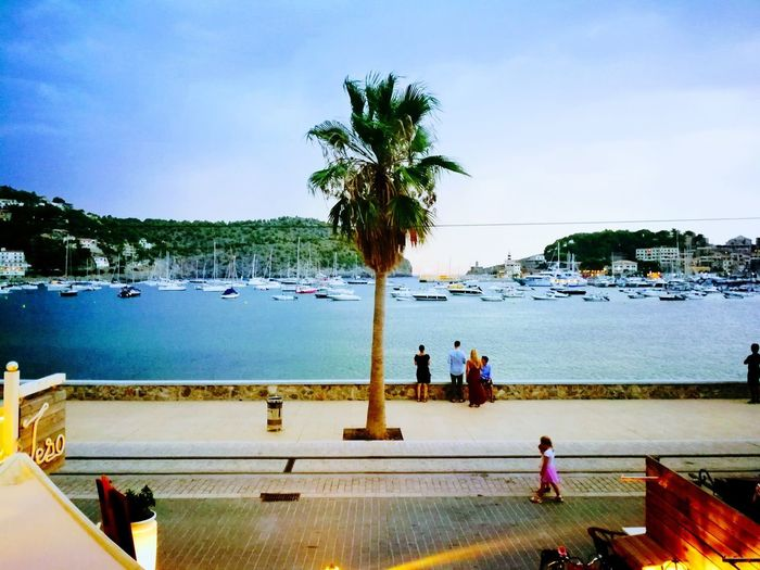 Port De Sóller Water Palm Tree Beach Sea Tree Women Sky Real People Men Vacations Leisure Activity Nature Summer Lifestyles Outdoors Day Swimming Pool Standing Vacations The Week On EyeEm Investing In Quality Of Life Your Ticket To Europe Beauty In Nature Adult