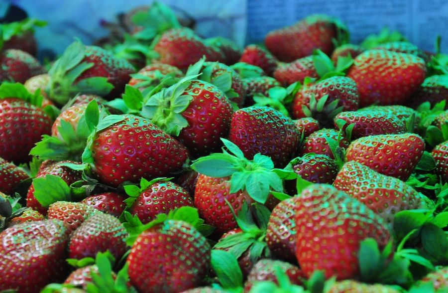 Red Freshness Fruit Healthy Eating Strawberry Close-up Food Food And Drink Green Color Juicy No People Leaf Berry Fruit Full Frame Backgrounds Nature Outdoors Day