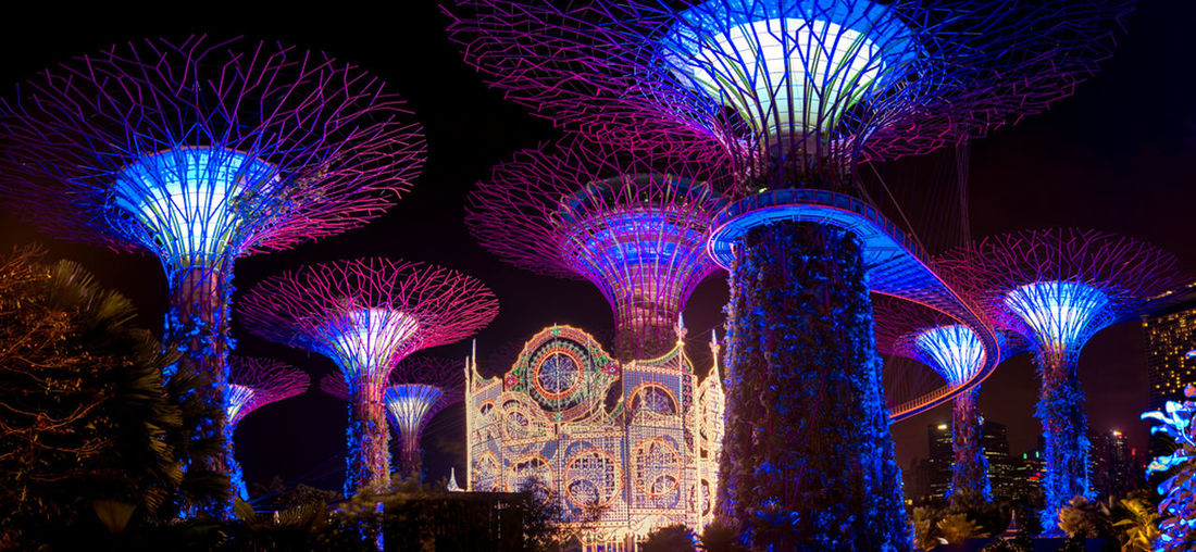 Singapore Gradens By The Bay Night Lights Night Photography Singapore Travel Photography